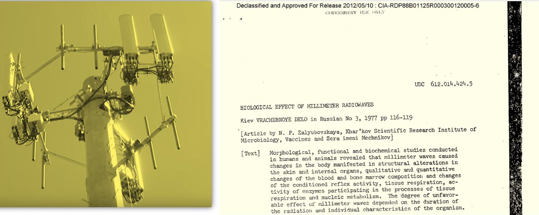 dr Joel Moskovitz: Bežična tehnologija 5G – Uticaj milimetarskih talasa na zdravlje (prevod na srpski jezik) i Rusko istraživanje milimetarskog zračenja iz 1977. godine